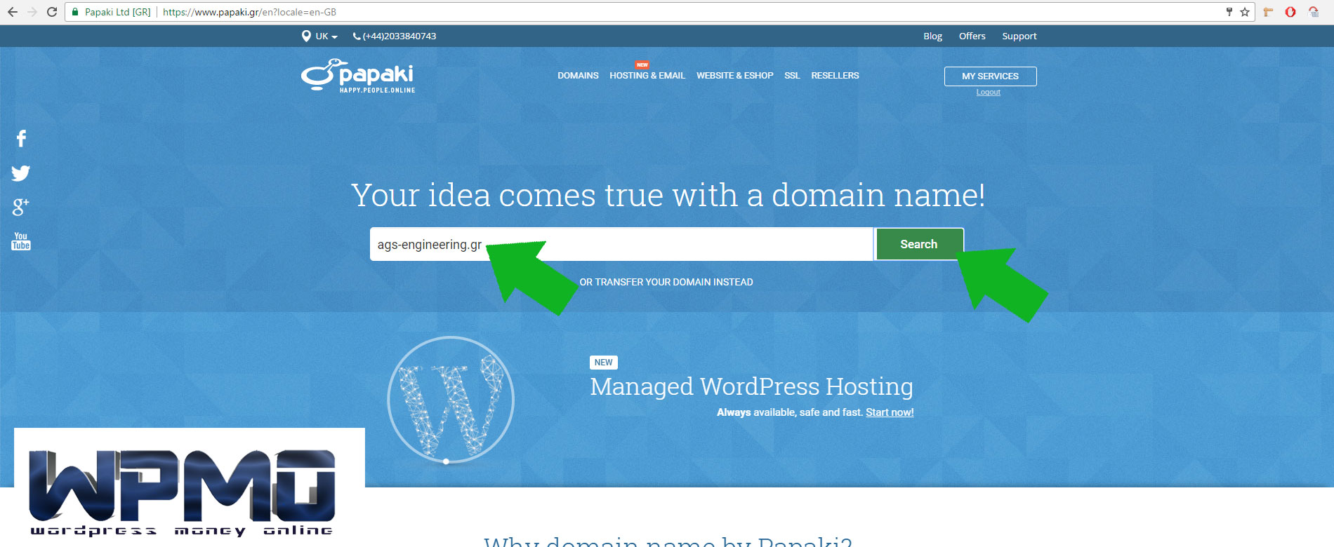 search-the-domain-name