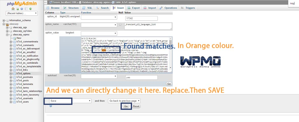Better Search Replace   Replace-inside-database-in-the-insert-Tab.